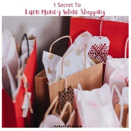 earn money while shopping pretty bags filled with shopping stuff