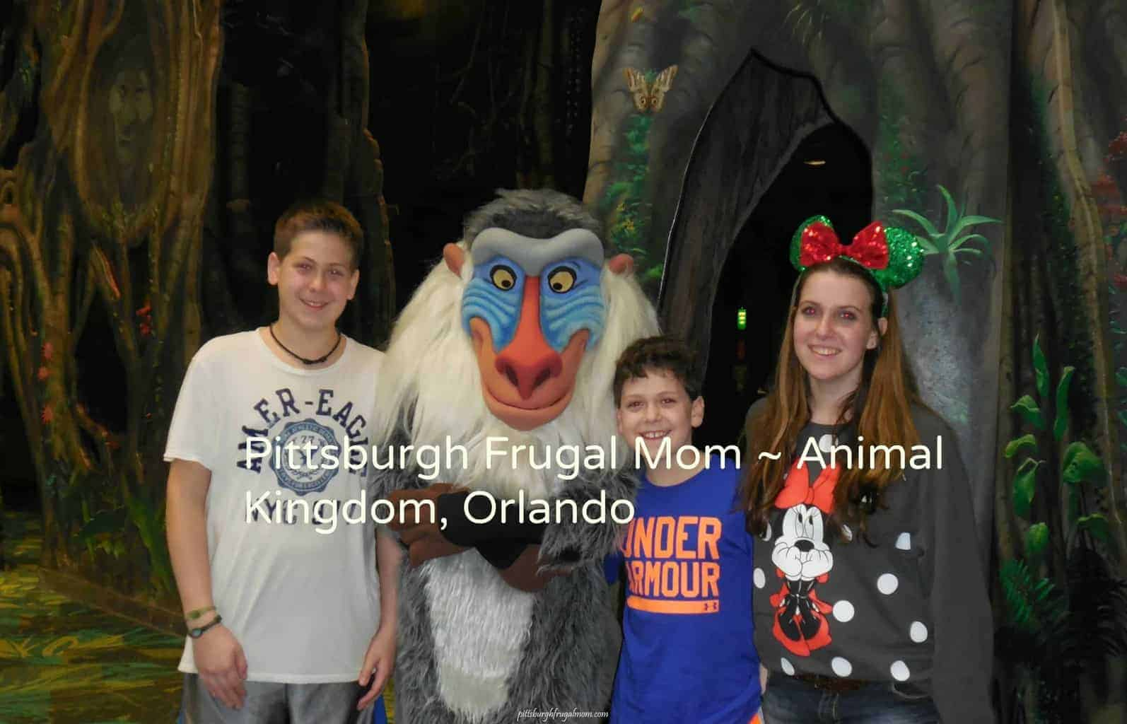 Planning Your Day At Animal Kingdom