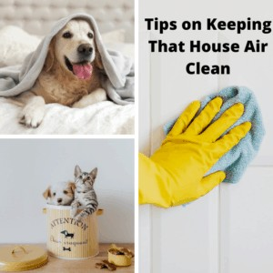 Tips on Keeping That House Air Clean