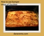 zucchini cake, zucchini bumper crop, veggies, spices, food, foodie, cooking, baking, in the kitchen, ingredients, easy to make, eggs, zucchini, vegetables, family, lunchbox perfect, panko, dana vento,