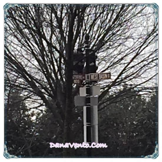 Washington DC, Martin Luther King, MLK Memorial, parking, tourism, touring, travel, family, history, education, walking tour, monuments, lincoln, washington, reflecting pond, travel, destination, dana vento,Travel to Washington DC and Tourism , travel blogger, dana vento