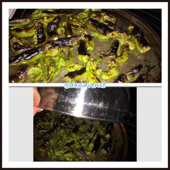 how to make blistered shishito peppers, peppers, cooking, food, foodie, food blogger, frieda's specialty produce, cooking, kitchen, veggie, vegetable, blistered, broil, salt, pepper, dana vento