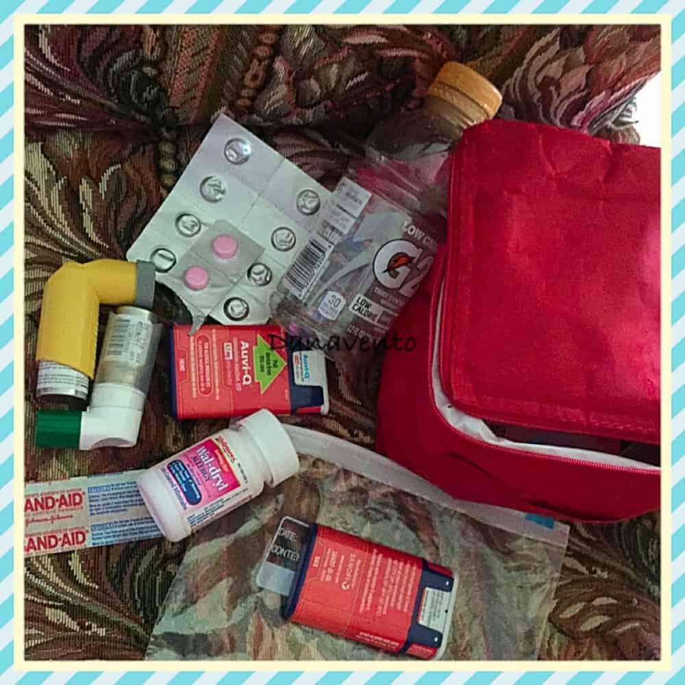 Allergy Bag for beach bag essentials