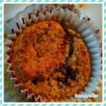 Low Carb Blueberry Muffin Recipe