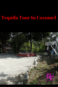 Tequila Factory Tour In Cozumel