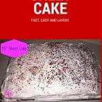 SIMPLE DIY SHEET CAKE, ALLERGEN FREE, FOOD ALLERGIES, HOW TO , MAKE, FOOD BLOGGER, TUTORIAL OF HOW TO MAKE A SHEET CAKE, SHEET CAKE, CAKE, ICECREAM, PARTY, BIRTHDAY, HOLIDAY, CELEBRATE