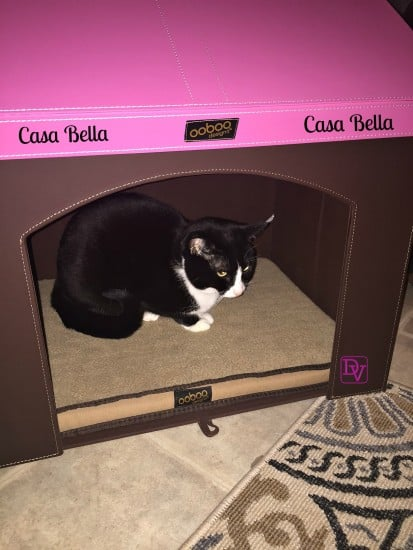 "cat, cats, dog, small dogs, small pets, under 21"", tuxedo cat, tuxedo cats, hiding spots, retreats, haven, pet haven, pet haven 2, pet haven 2 in with pink roof, indoor home for pets, indoor folding pet house, indoor folding pet house for cats, memory foam mattress, carry bag, attic storage, toy storage, second level for small cats, washable, wipeable, faux leather outside, holiday, good looking house, ooboo designs, fast shipping, pet haven 2 for cats, family pet, comfortable sleeping, air holes, easy to carry, easy to assemble, no tools required, ad"