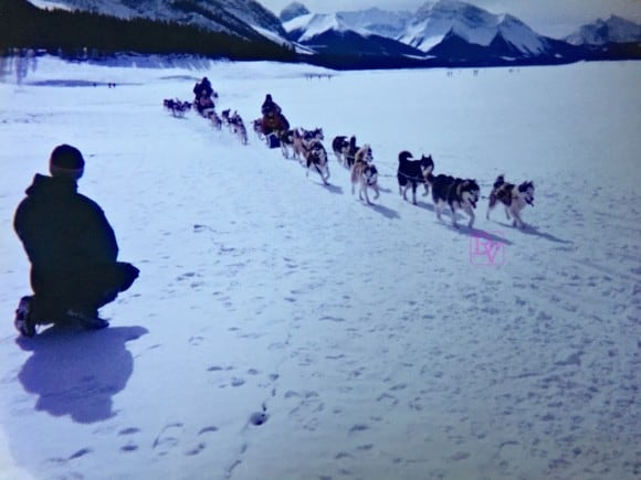 ice fishing, spray lakes, lake louise, banff, alberta, canada, travel, travel blog, travel blogger, travel, family travel, adventures, adventure, vacation, fun