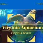 Virginia Aquarium At Virginia Beach