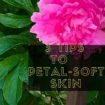 3 Tips To Petal Soft Skin