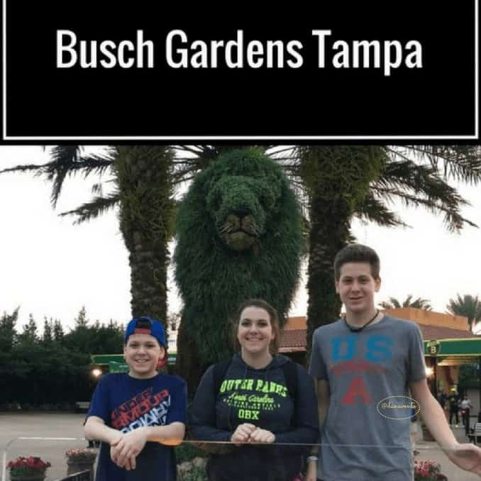 14 Things You Need To Know About Busch Gardens Tampa,14 Things You Need To Know About Busch Gardens Tampa,cheetah hunt, bengal, sand serpent, dragon fire grill, Pantopia, serpent, all day dining deal, breakfast, zagora cafe, eggs, toast, potatoes, coffee, beverages, jello, fast food, patio dining, outdoor, under cover, Morocco, busch gardens, tampa, orlando, central florida, theme park, family park, family adventure, family travel, travel blog. travel blogger, fun, rides, shows, animals, entertainment, tickets, food, coaster, shopping, walkable, travel, vacation, destination, adventure, fam tour, fam travel, ice cream, popcorn, alcohol, beverages, bathrooms, large, trains,