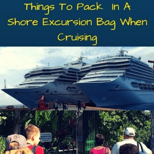 Well Packed Shore Excursion Bag For Cruisers