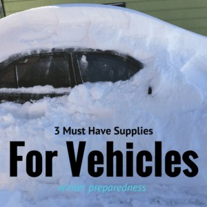 3 Must Have Trunk Supplies For Winter