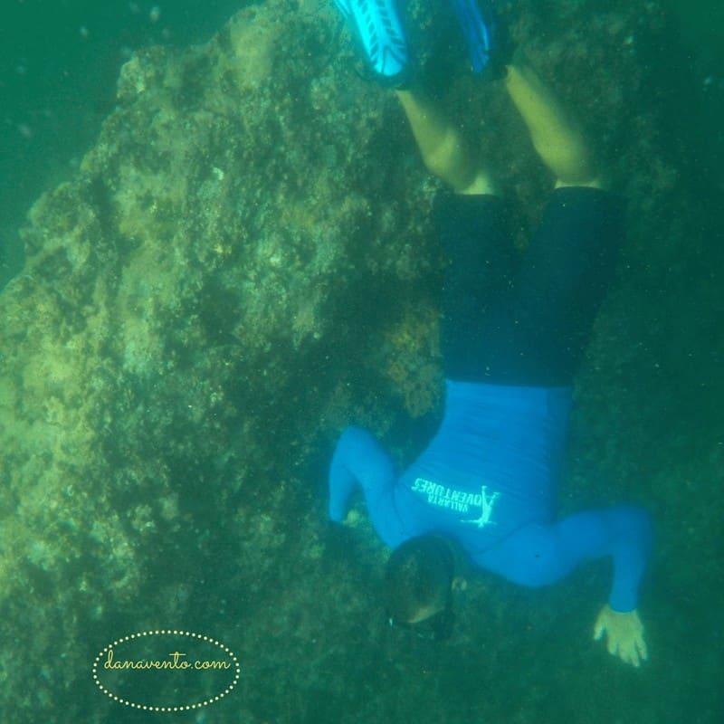 Under the water snorkeling Los Arcos in Puerto Vallarta