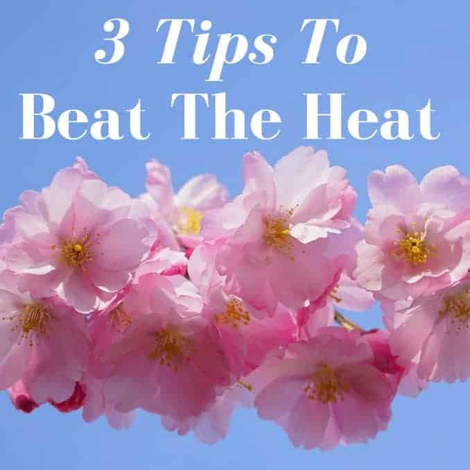 3 tips to beat the heat, water, shade, supplements, tips, tricks, healthy lifestyle