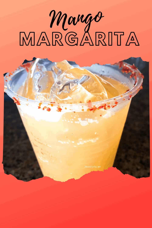 Mango Margarita Puerto Vallarta