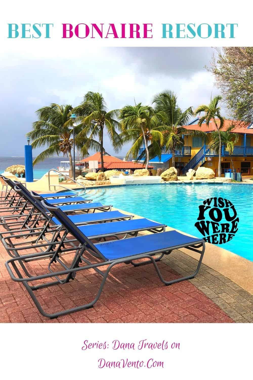 Best Bonaire Resort Pool By Dive Divi Shop