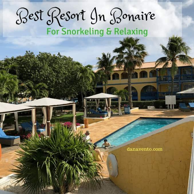 Bonaire Divi Pink Flamingo - Best diving resort in Bonaire