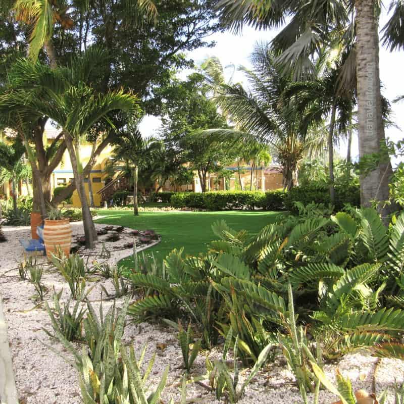 Best Bonaire resort: Divi Bonaire Flamingo resort property