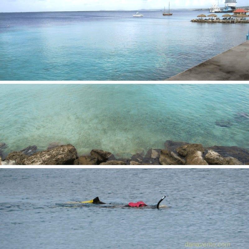 Snorkeling in front of Divi Bonaire