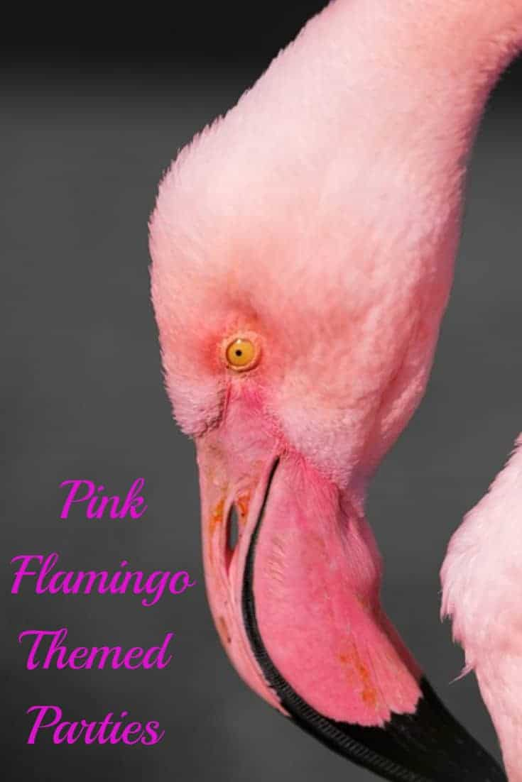 How To Throw A Pink Flamingo Themed Party, pink, pink flamingo, parties, tips, tricks, diy and how to