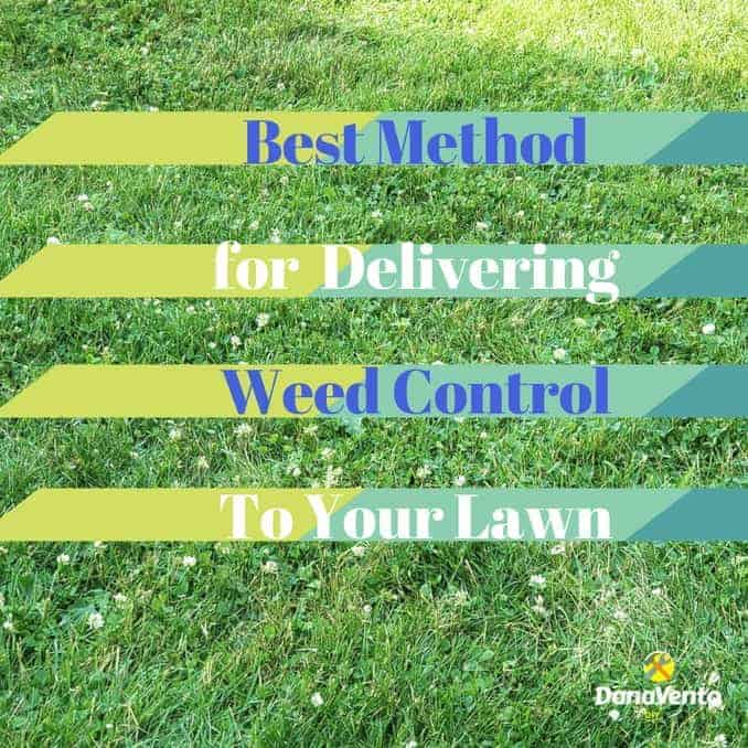 Best Method For Delivering Weed Control To Your Lawn, Diy, diy blogger, redo, redecorate, freshen, tips, tricks, around the house, projects around the house, seasonal projects, monthly projects, why, tips and tricks, outdoor maintenance, curb appeal, do outside work, RYOBI Outdoor Tools, RYOBI Expand-It, Clean-Up, Overhaul, lawn, trees, walkways, sidewalk, tall trees, pruning, edging, 40 V Battery, rechargeable, suggestions, products, easy, fast, makes a difference, cleaning, cleaning up, how to, why to, what room, indoor, outdoor, RYOBI 18V Cordless 2-Gallon Chemical Sprayer, rechargeable battery, One Plus, Outdoor tools, easy to use. long wand, fast, no pumping, 2 gallons, spray, mix, go, shoot weeds, ergonomically friendly, fast, and easy, weeds, lawn weeds, broad leaf weed killer, rain, kids, pets, concentrate, focus, spray, tips, tricks, ideas,