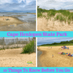 10 Things To Know About Cape Henlopen State Park