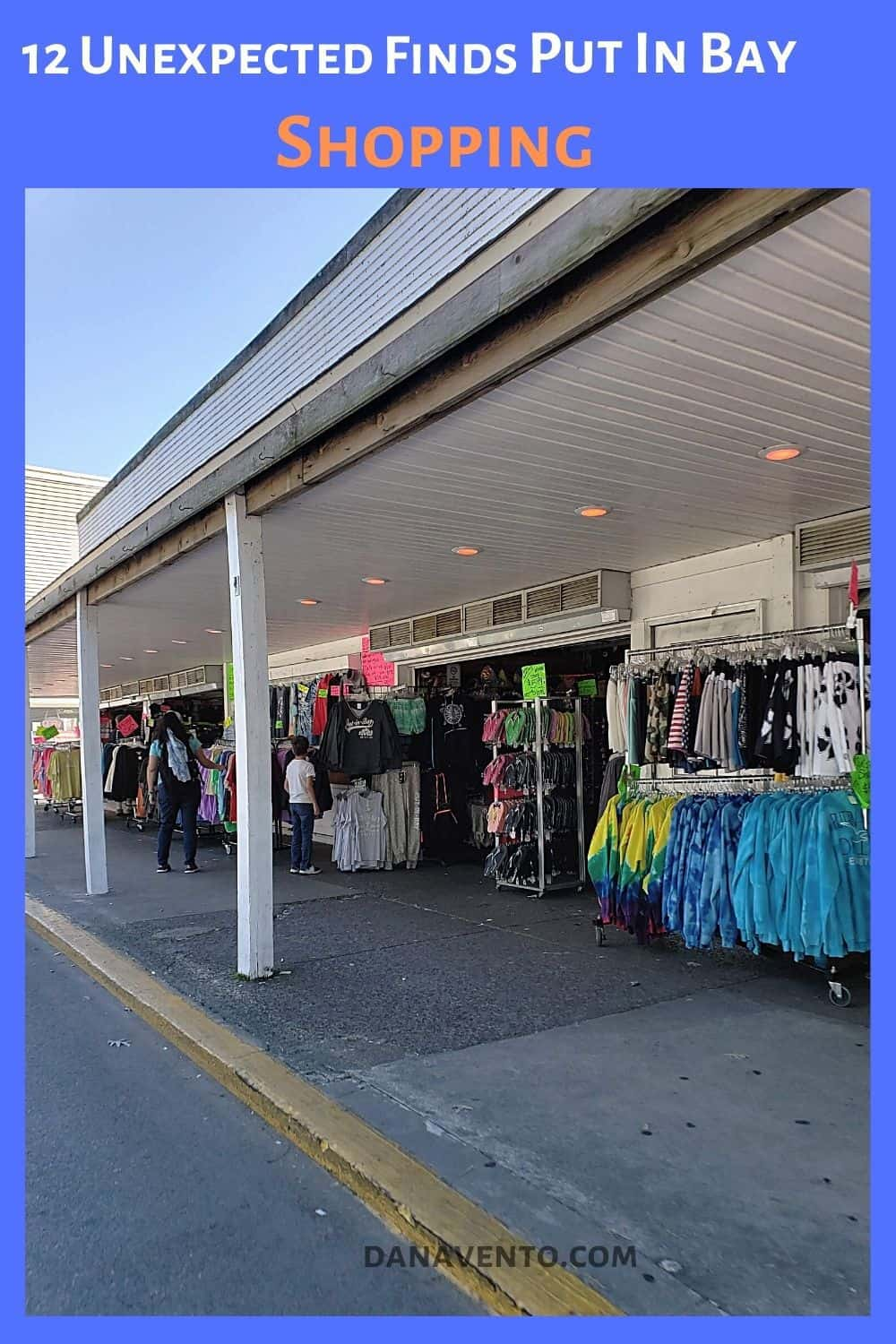 Put In Bay shopping on Delaware Avenue
