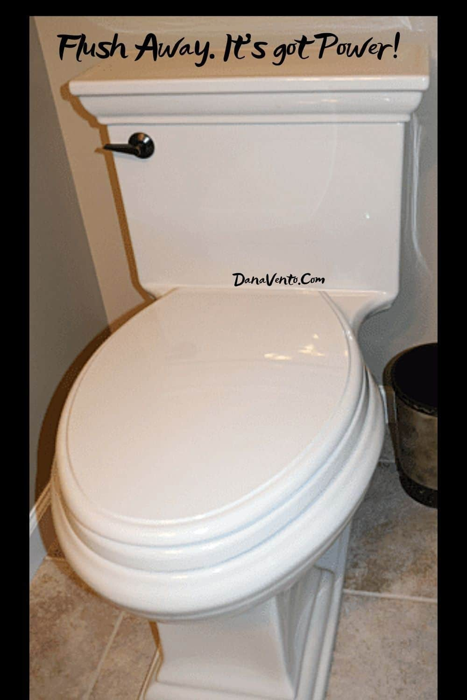 Flush Away Its got Power half bath remodel DIY