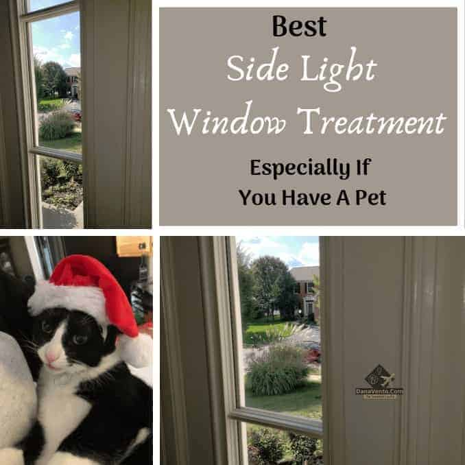 Best Sidelight Window Treatments For Pets & Privacy!