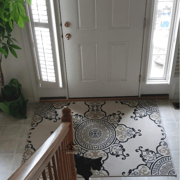 Best sidelight window treatments for pets and privacy installed with one open and one closed daytime.