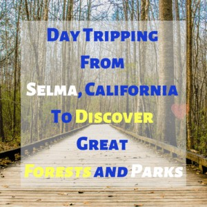 DayTripping From Selma California To Discover Great Forests and Parks