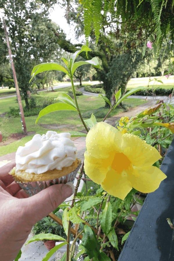 bayou, snowballs, cupcakes, sculpture