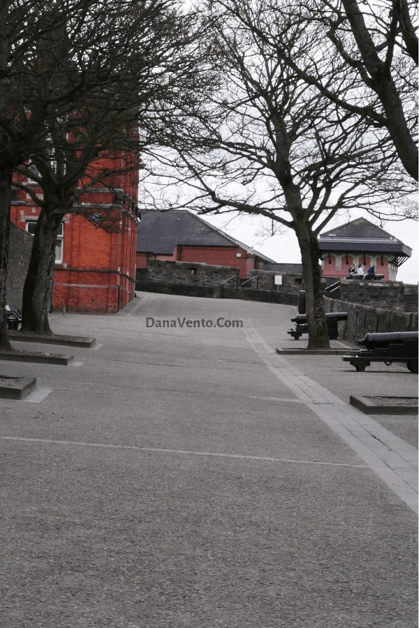 Cannons on the Walls of Derry
