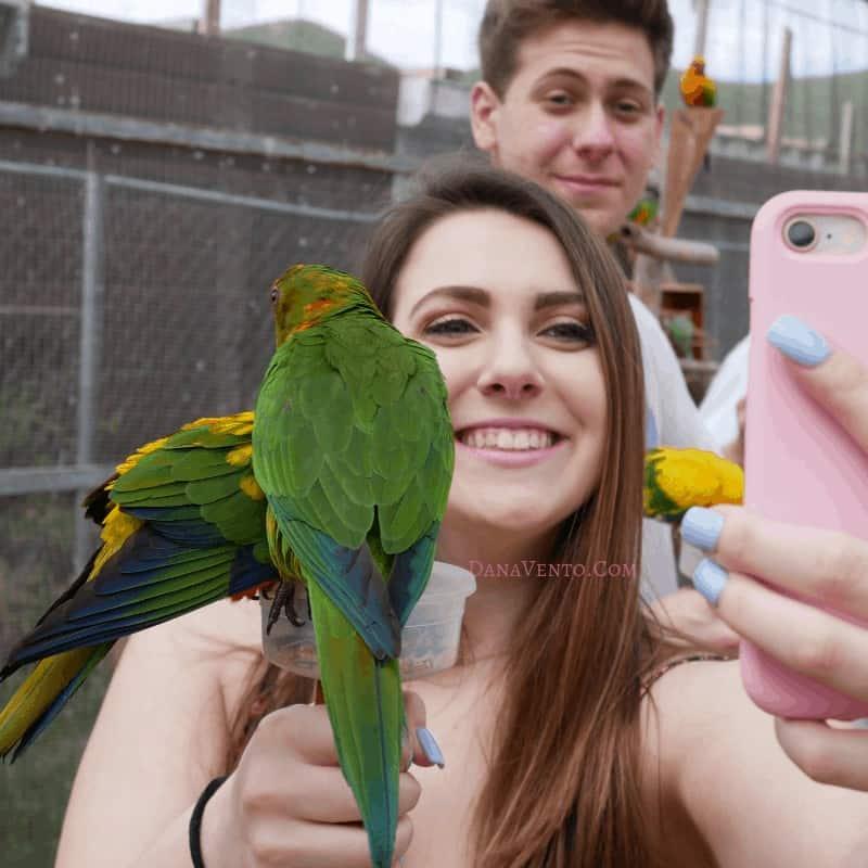 Sint Maarten Bird Sanctuary with my kids and birds