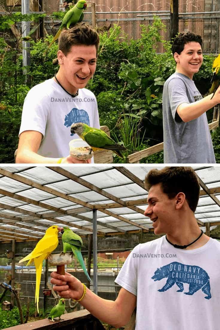 My boy teens smiling at Sint Maarten bird sanctuary - interactive