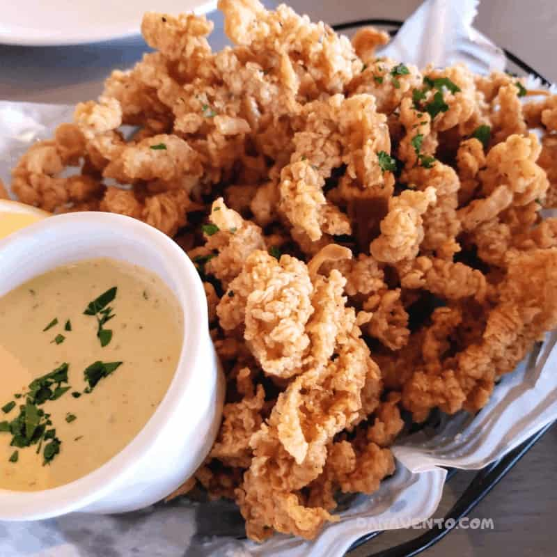 Freshest Seafood Dinner in the Outer Banks, Steamers Pots, Lobster, Crab, shrimp, Fish, Seafood, Meat, Vegetarian, Allergen Friendly, Cocktails, Deck, Oceanview, free parking, Duck, OBX, Outer Banks, In Outer Banks, North Carolina, Where to eat, casual, upscale, hash, crabcakes, foodie destination, catering, lunch, dine in, take out, rental homes, large parties, large bar, fun, dessert, salads,