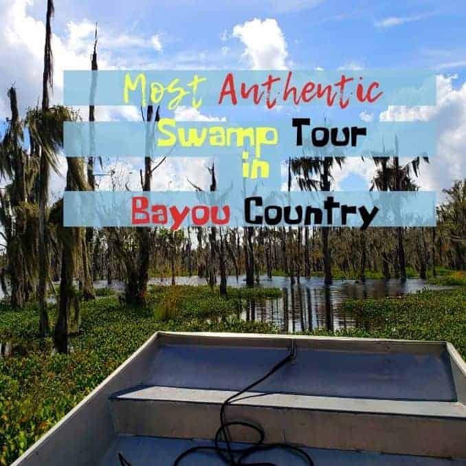 Bucket list-Worthy Swamp Tour.