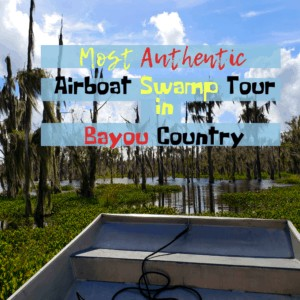Most Authentic Airboat Swamp Tour in Bayou Country