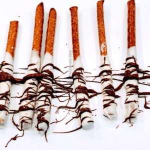 Easy Hand-Drizzled Chocolate Covered Pretzel Rods