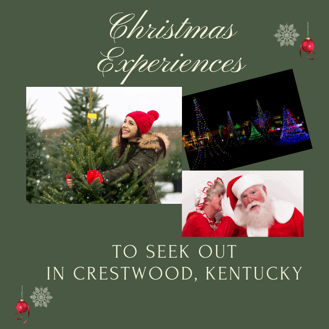 Crestwood Kentucky Christmas Experiences, Sleigh Rides, Light Festivals, Hot Chocolate, Family Time, Couples, Driving, Close to Crestwood, Cars, Minivans, Travel, Fun, Kentucky, Central, snow, holidays, celebrations