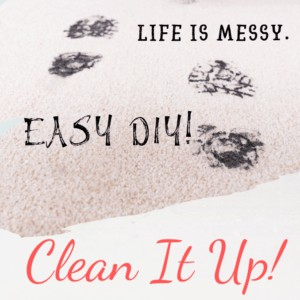 DIY. Life is A Mess, Clean It Up!