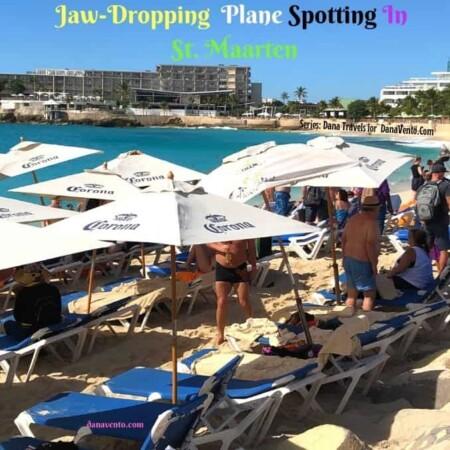 Jaw Dropping Plante Spotting In St Maarten 2