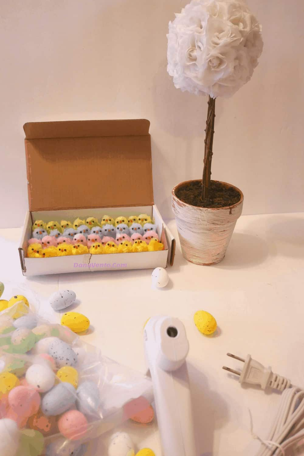 Chicks in Carton for Topiary