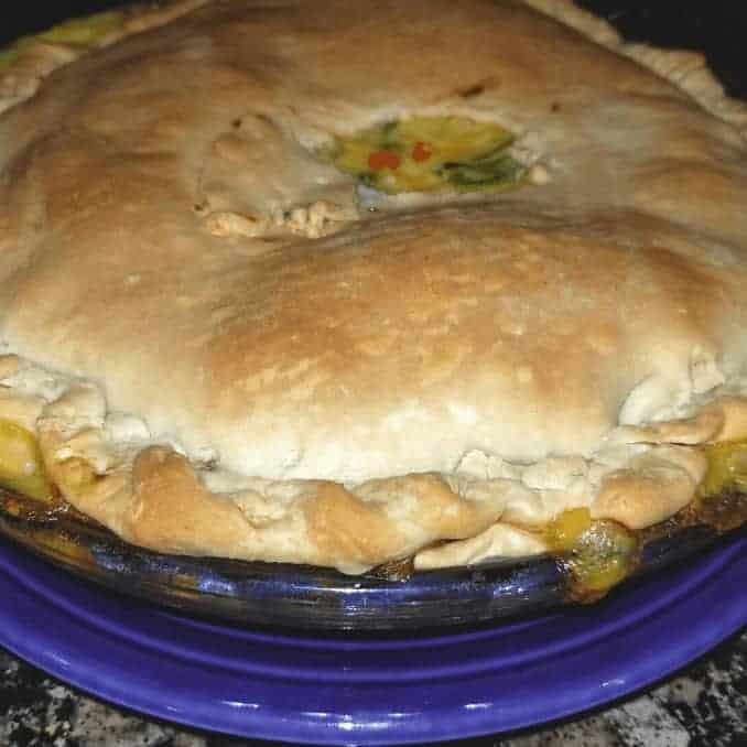 Really Easy and Delicious Chicken Pot Pie baked up close