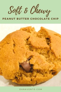 Flourless Peanut Butter Cookies with Only 6 Ingredients solo cookie