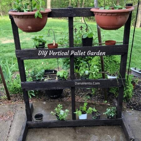 Pallet Herb Garden up close
