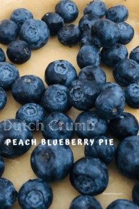 blueberries in pie crust