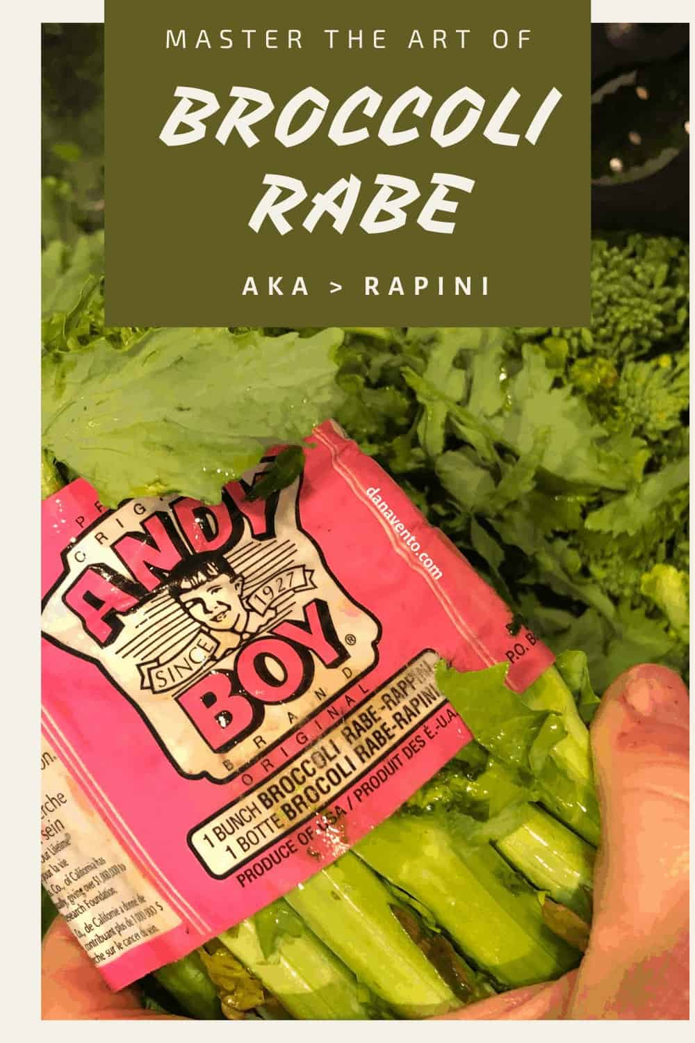 broccoli rabe in wrapper, sharing the name, broccoli rabe and rapinin