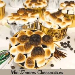 Mini S'mores Cheescakes